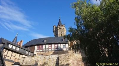 24trophy Wernigerode -- 0241