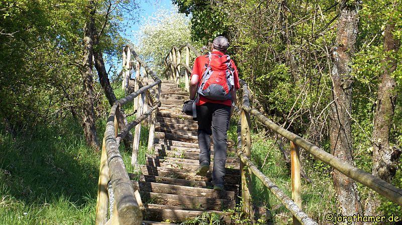 Rheinsteig Treppe