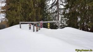 Schneeschuhwandern in Davos - GWunderwald