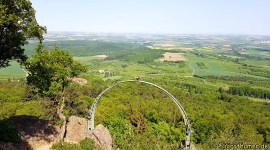 Wandermarathon Donnersberg - Adlerbogen