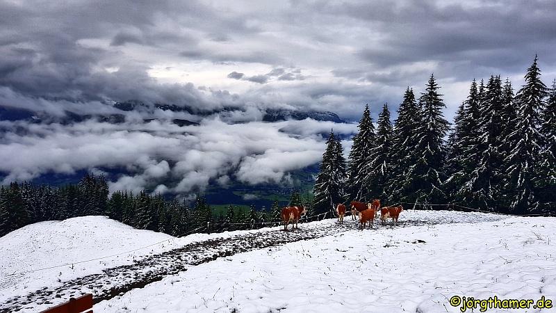 Wanderung im Pinzgau