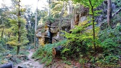 0105 Mullerthal Trail Tag 2 DSC01302_JPG