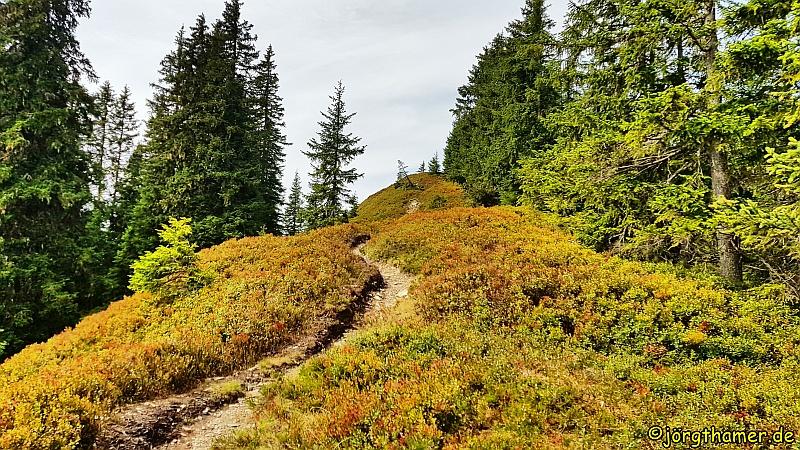 Kitzbüheler Alpen - Bernkogel