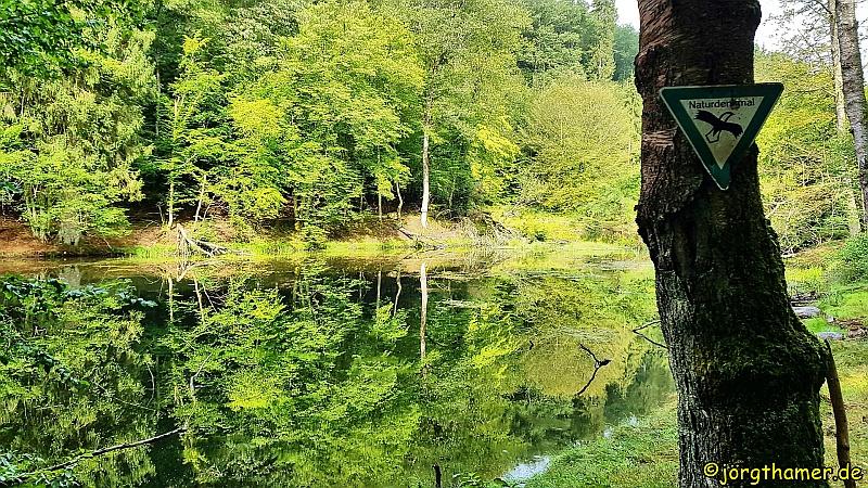 Wandern im Spessart - Bomigsee