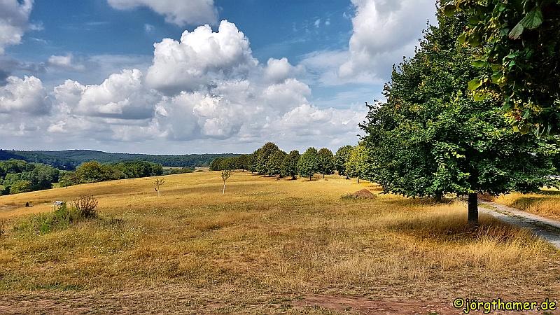 Panoramaweg Rothenbuch