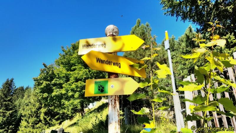 Foxtrail Davos Wanderweg