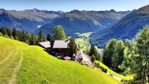 Foxtrail Davos - Strela Alp