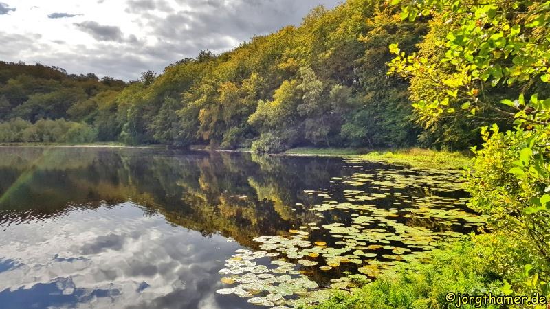 Natur pur am Schwarzen See (Naturpark Granitz)