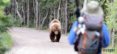 Tips to Stay Safe from Bears While Camping, Hiking or Backpacking