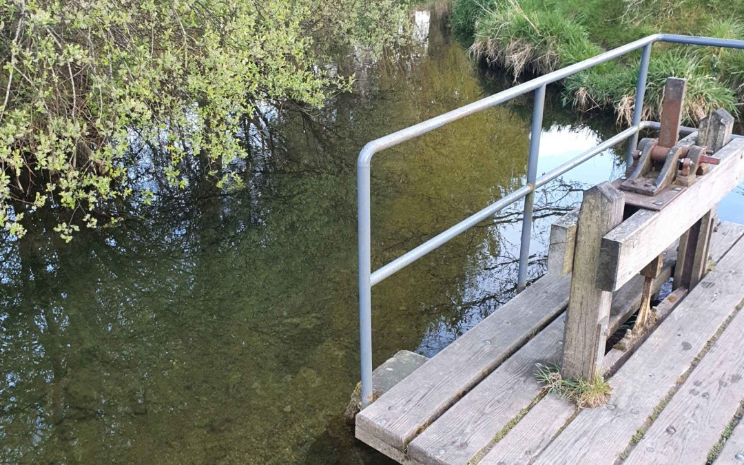 River Morrell between Sallins and Kill