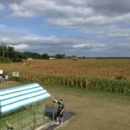 Cornfield Maze