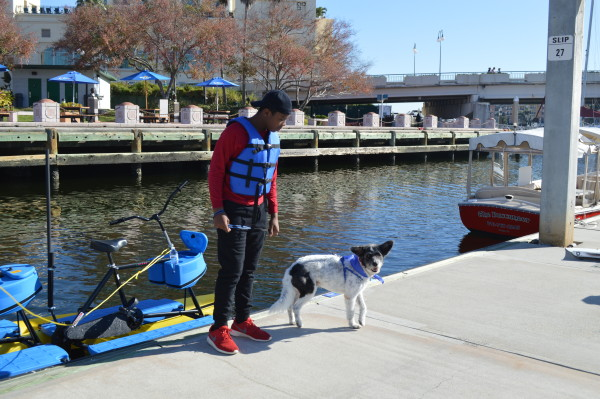 tampa bay waterbikes