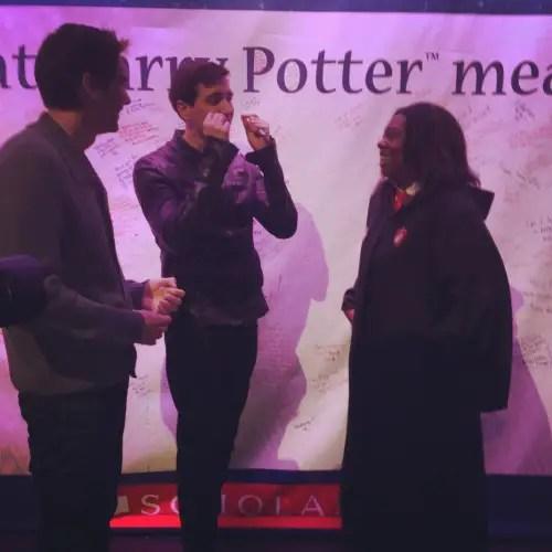 weasley twins celebration of harry potter
