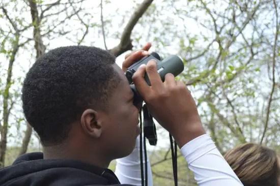black bird watchers
