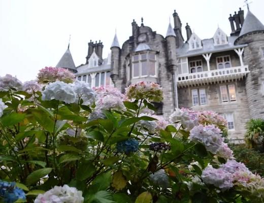 stay in a castle