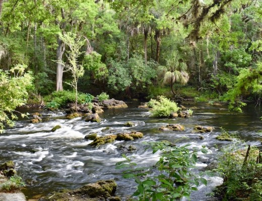 florida hiking trails