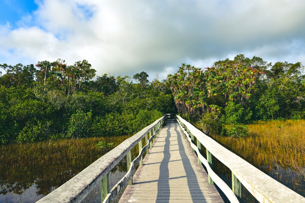 national parks in florida