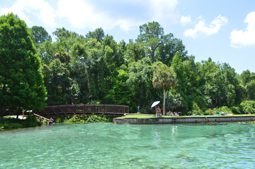 florida springs kelly park