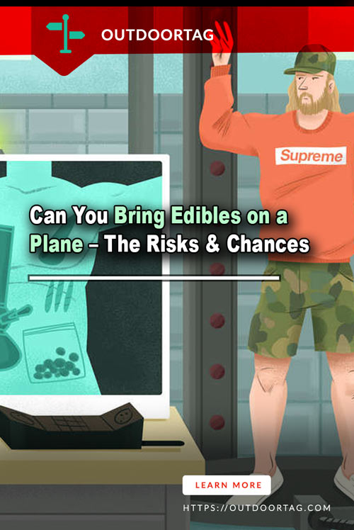 Can You Bring Edibles on a Plane – The Risks & Chances