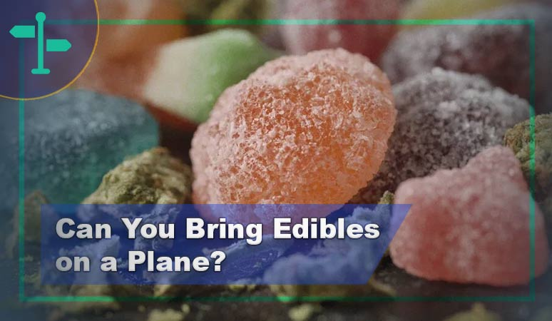 Can You Bring Edibles on a Plane