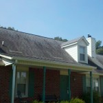 Black Streaks on Roof Pressure Washing not required...