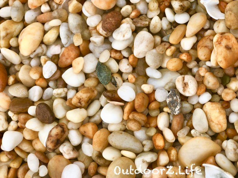 Sandy Hook, Beach, Outdoorzlife