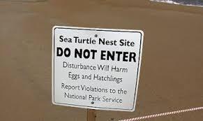 turtle-nest-site-sign