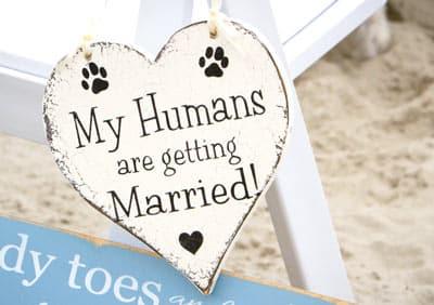 dog in wedding sign
