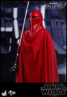 Hot-Toys-Star-Wars-Royal-Guard-002
