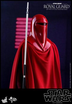 Hot-Toys-Star-Wars-Royal-Guard-008