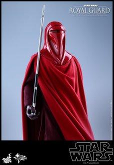 Hot-Toys-Star-Wars-Royal-Guard-017