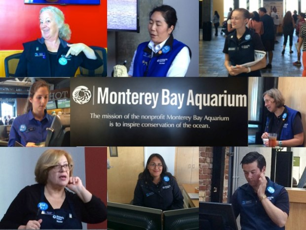These blue buttons, miniature versions of the display above, are ubiquitous around the Monterey Bay Aquarium. Staff and volunteers alike have pinned them to shirts, belts, and lanyards.