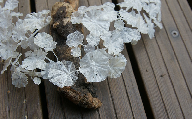Wiebke Pandikow recycle plastic jewelry art
