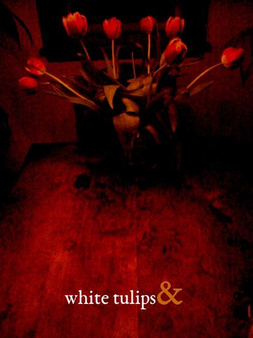 Ronald Baatz | white tulips&