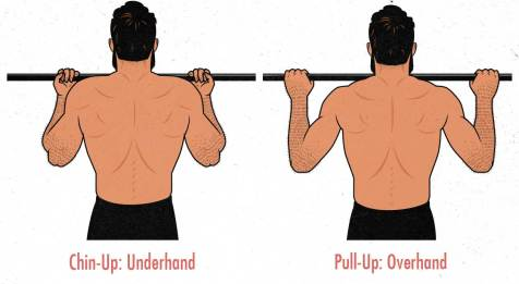The Chin-Up Hypertrophy Guide – Outlift
