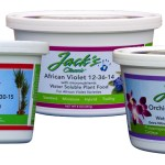 Cool Weather Fertilizers For Indoor Plants – Power Them With Jack's
