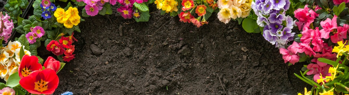 Good Soil and Good Knowledge for Better Gardening