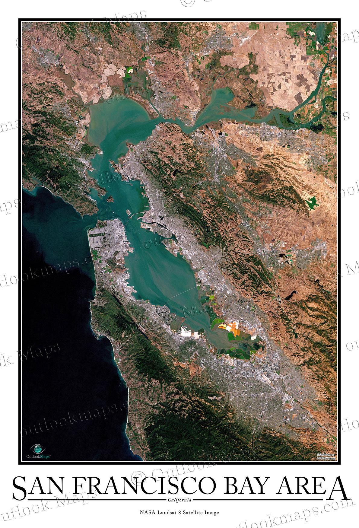 Seafood San Francisco Bay Area