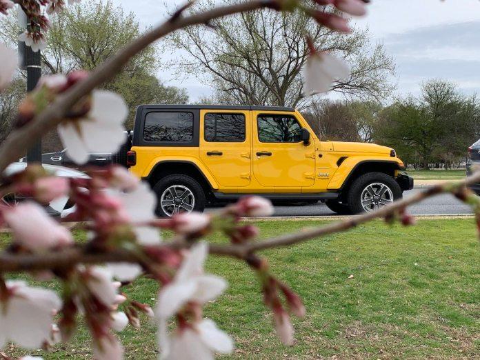 Jeep Wrangler EcoDiesel cherry blossoms