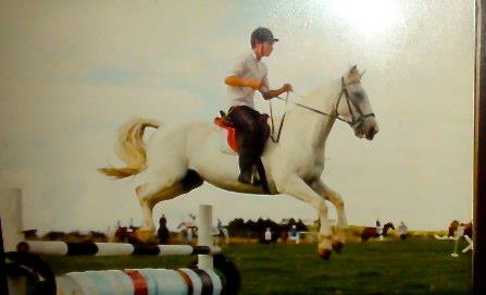 horsey-shane