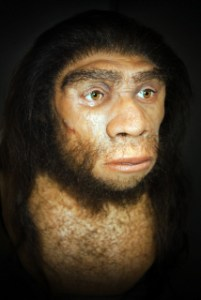 Remains of 'gay caveman' unearthed