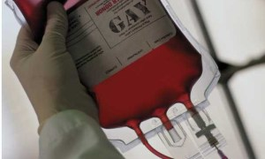 Stormont to decide whether gay men can donate blood