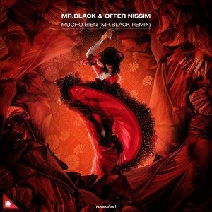 MR.BLACK & Offer Nissim - Mucho Bien (MR.BLACK Remix)