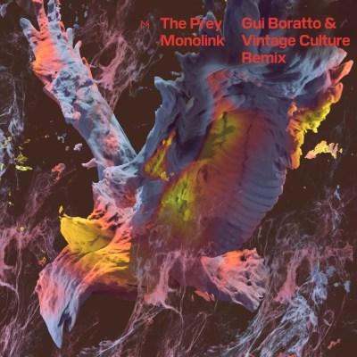 Gui Boratto and Vintage Culture - The Prey (Remix)