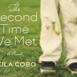 The Second Time We Met by Leila Cobb Book Review