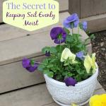 The Secret to Keeping Soil Evenly Moist