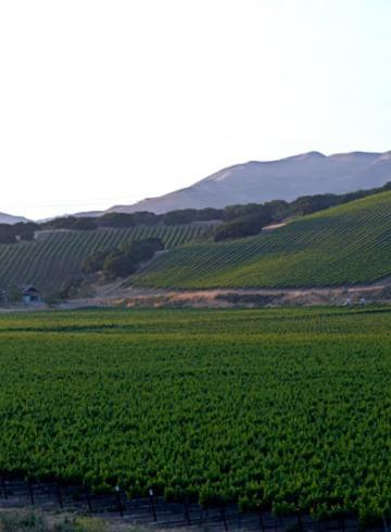 Santa-Ynez-Wine-Trail
