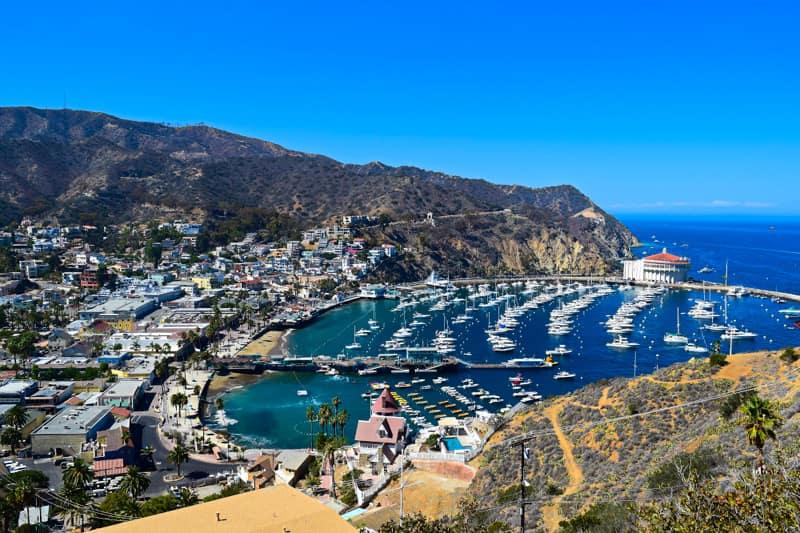 Oh Avalon! A Day Trip to Santa Catalina Island