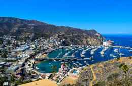 Best Catalina Island
