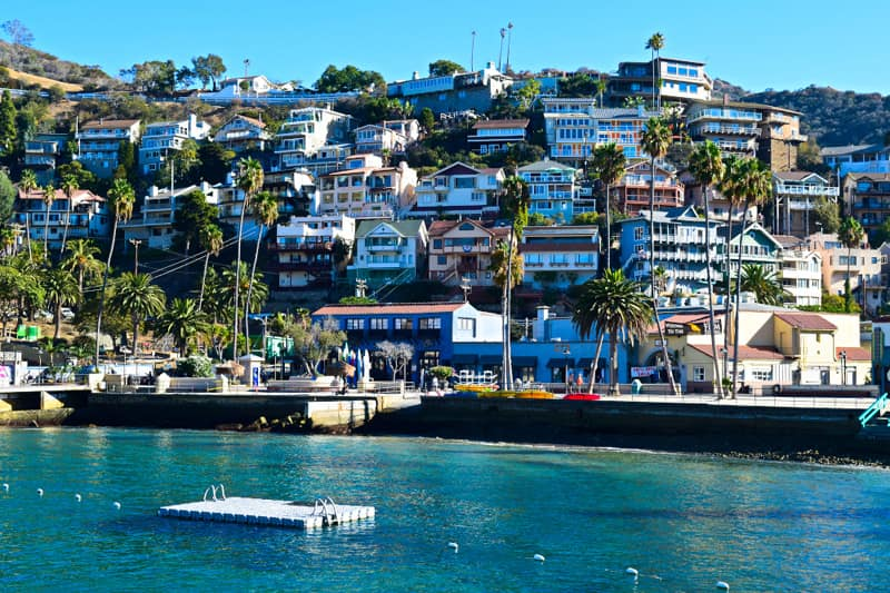 Best Catalina Island